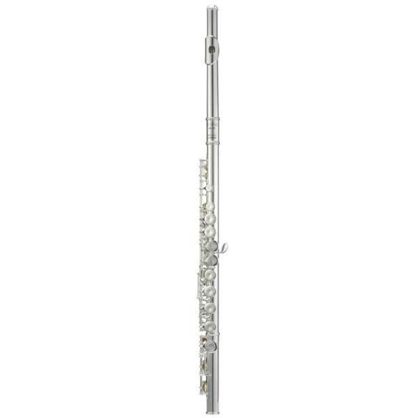 Flauta Transversal Michael WFLM-35