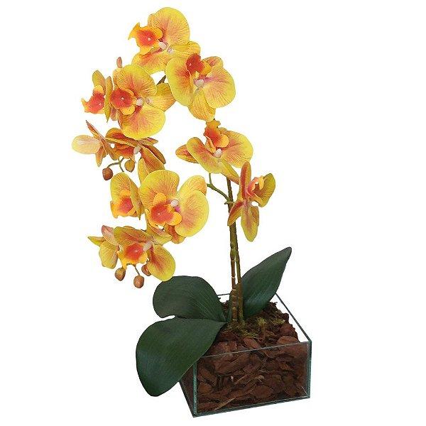 Arranjo orquídeas amarelas, vaso de vidro incolor 15x45 cm