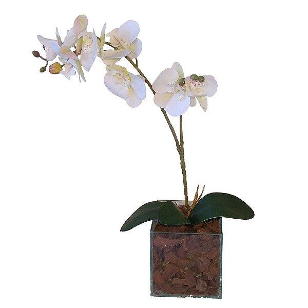 Arranjo orquídeas brancas, vaso de vidro incolor  13x48 cm