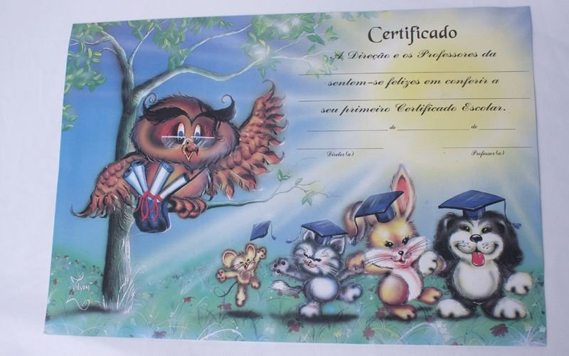 Pacote 10 unidades Certificado Infantil
