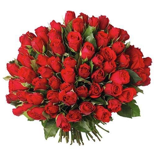 Bouquet red  ( 100 rosas )