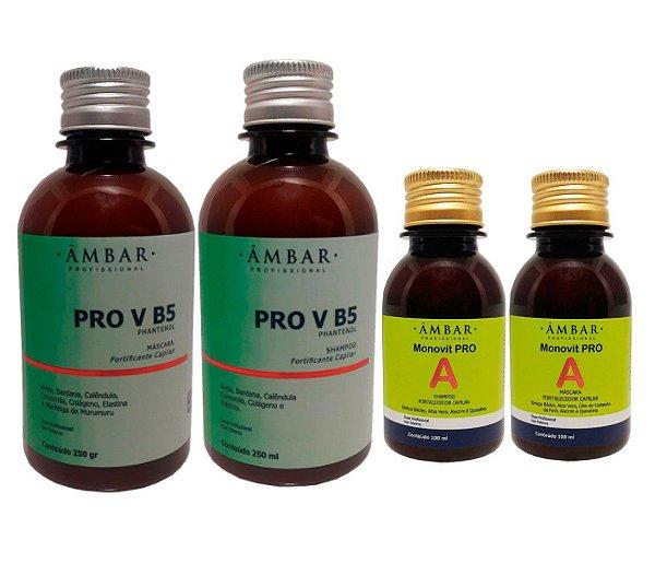 Kit  Pro V B5 250ml e Monovit Pro A 100ml