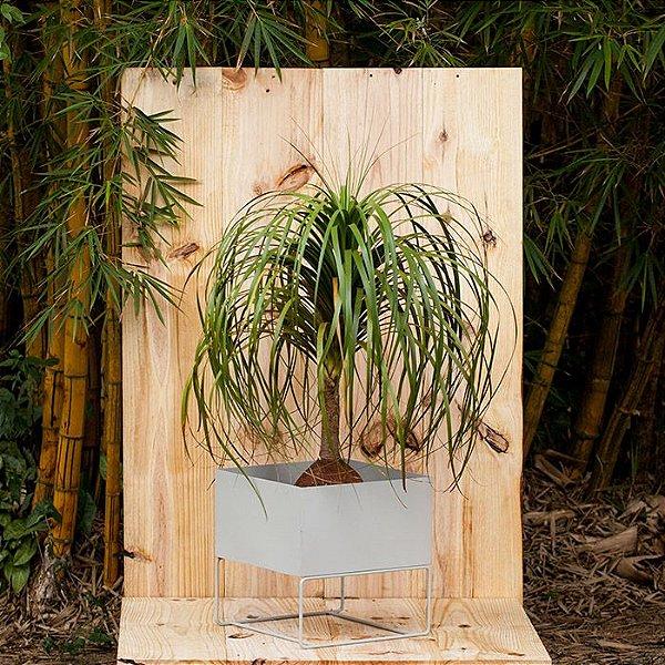 Cachepot para Plantas - 44x44x40