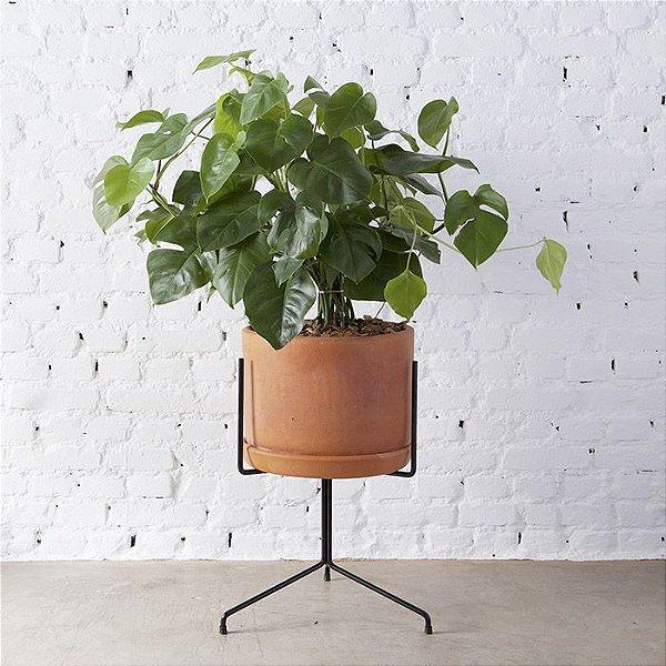 Suporte para planta N°4