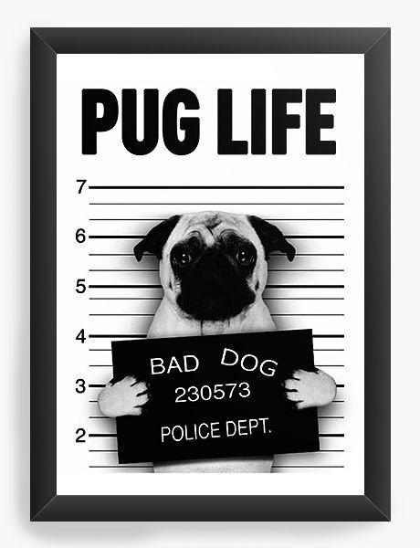 Quadro Decorativo A4 (33X24) Pug Life