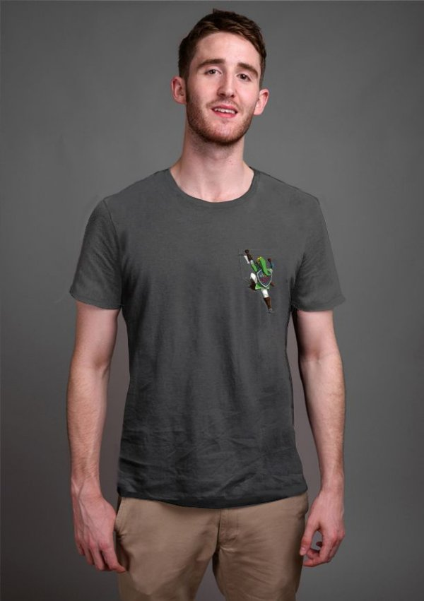 Camiseta Masculina Jogo The Legend of Zelda Link