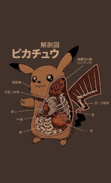 Camiseta Pokemon Pikachu Anatomy