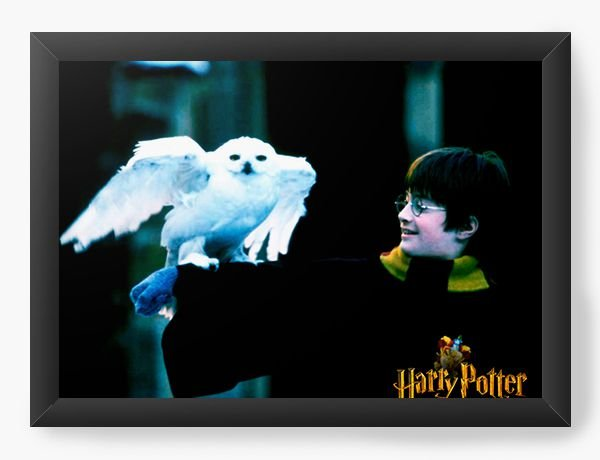 Quadro Decorativo Harry Potter - Movie