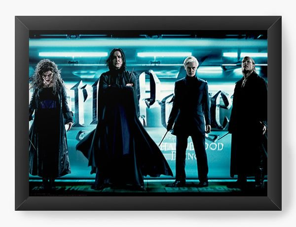 Quadro Decorativo Harry Potter - Sonserina