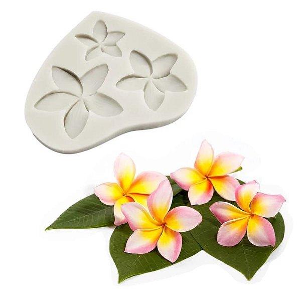 Molde de silicone Flor plumeria