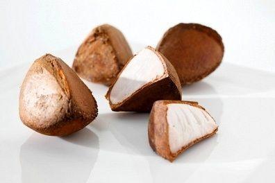 Óleo vegetal de Andiroba Orgânico Riquezas da Terra 30 ml