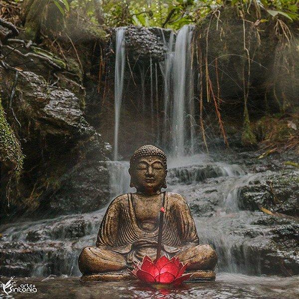 Buda de Cimento Gold 30cm