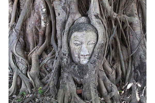 Alice Ramos - Cabeça de Wat Maha