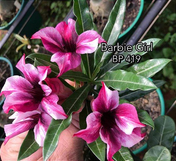 Enxerto de uma cor com flor simples BP 419 Barbie Girl - Importada