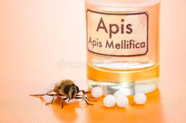 Gel de Veneno de abelha ozonizado para dores musculares e articulares