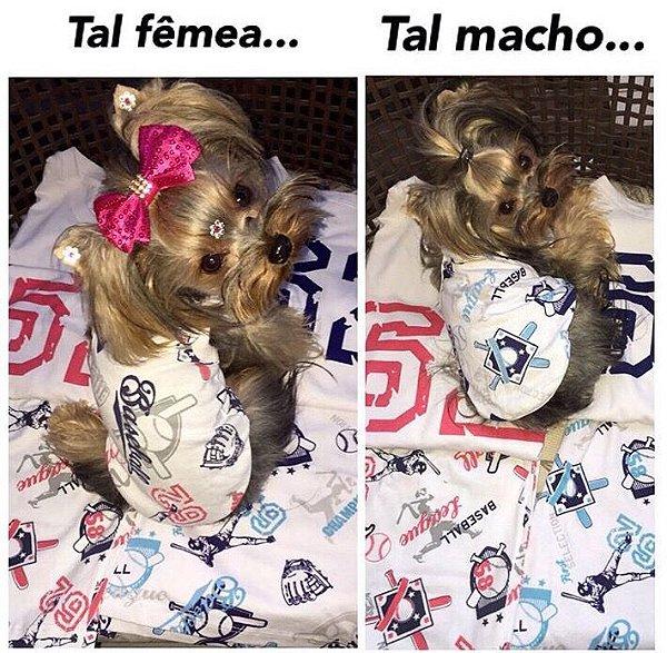 Pijama para cachorro macho ou femea