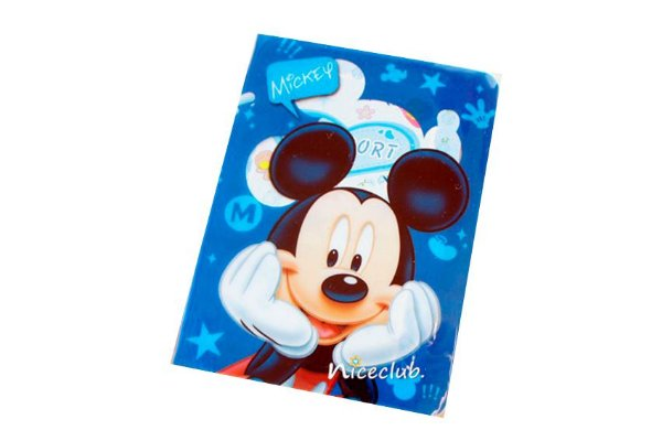 PORTA DOCUMENTOS OU PASSAPORTE MICKEY