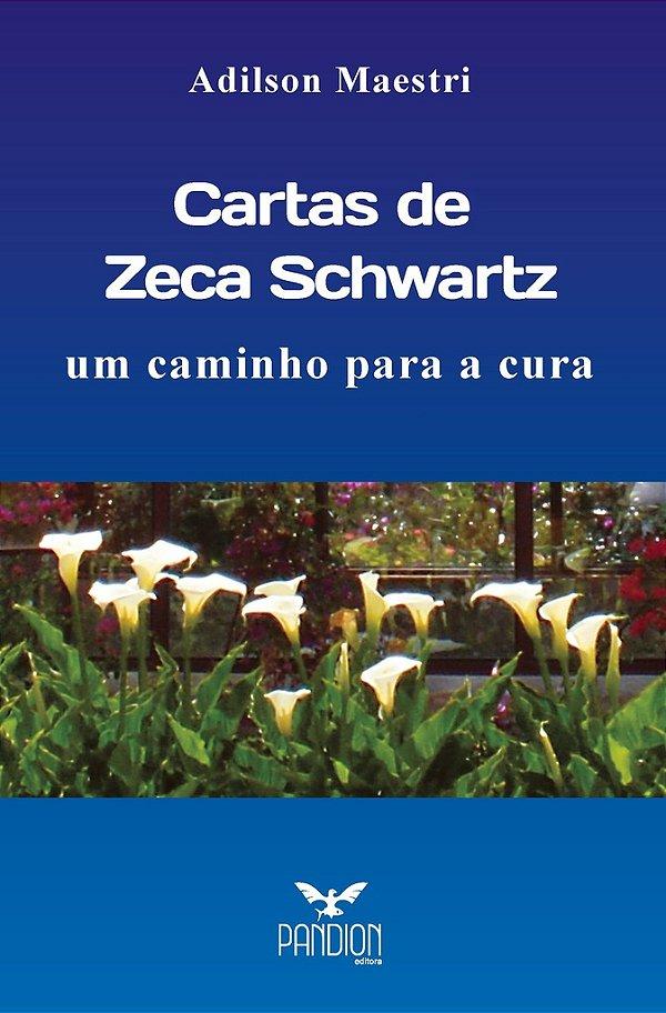 Cartas de Zeca Schwartz: um caminho para a cura