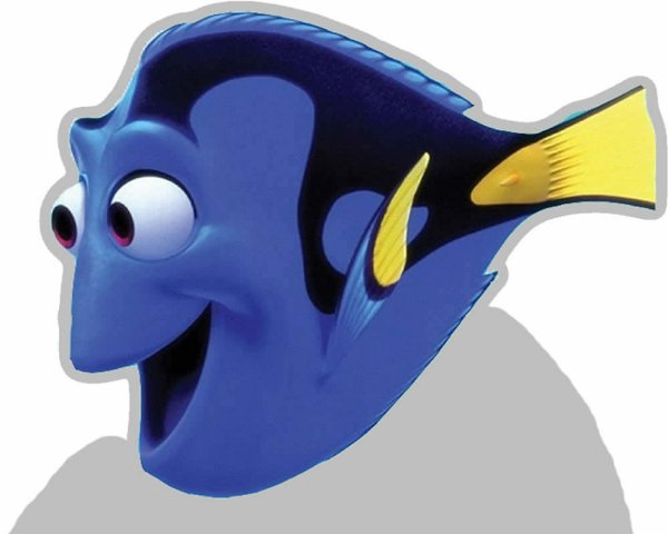 Totens - Displays - Nemo
