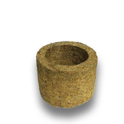 3 Unidades de Xaxim de Palmeira - Tamanho Pequeno