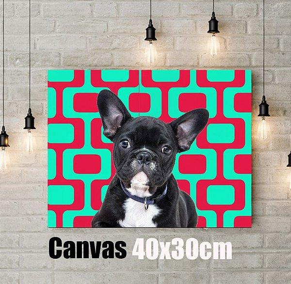 Q!Pet Canvas Premium 40x30cm