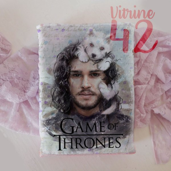 Capa Tipo Luva para Livro - Game of Thones - Jon Snow