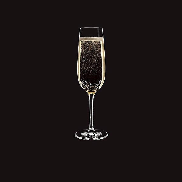 Taça Carpe Diem Champagne / Ø 6,7cm x h 21cm / 200ml