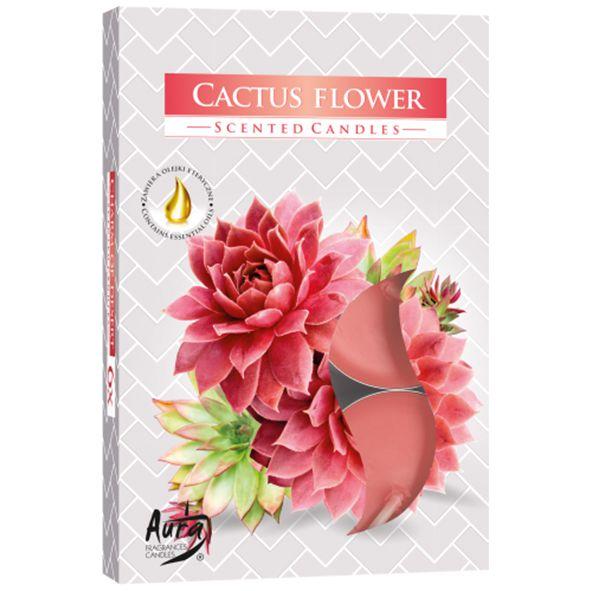 Vela T'Light Aroma Flor de Cacto