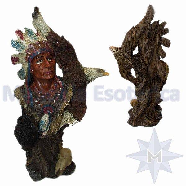 Índio Norte Americano Cacique Xamã com Totem Águia