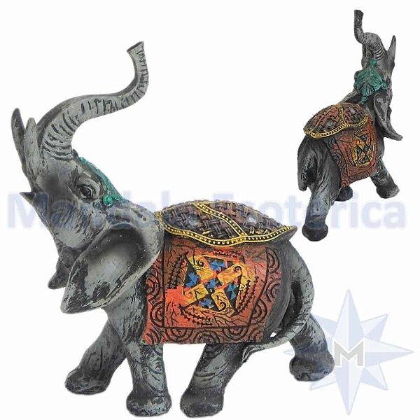 Elefante Colorido Médio - C