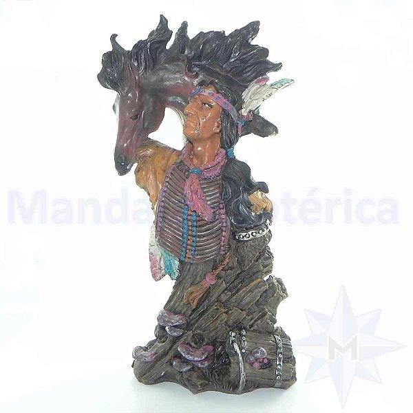Xamã com seu Totem Cavalo Espirito de Sabedoria