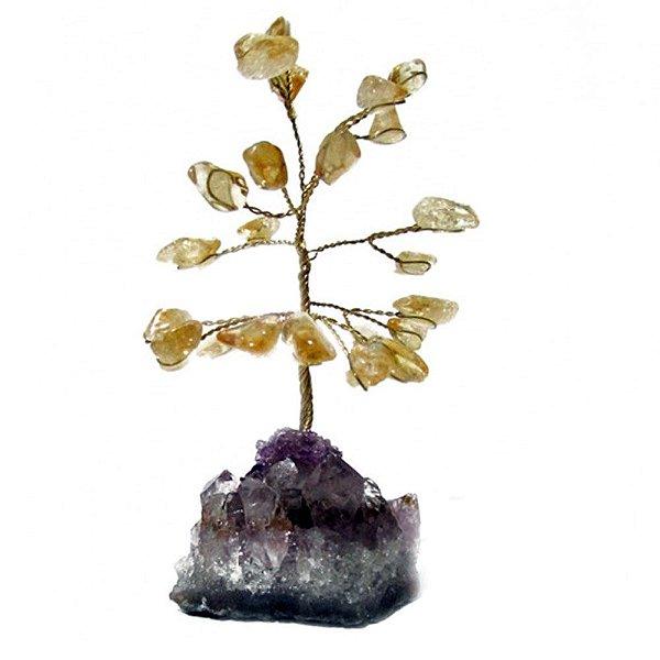 Árvore de Citino com Base de Drusa Bruta Pequena