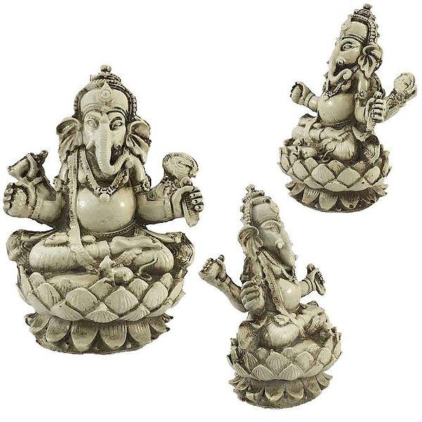 Ganesha M na Flor de Lotus