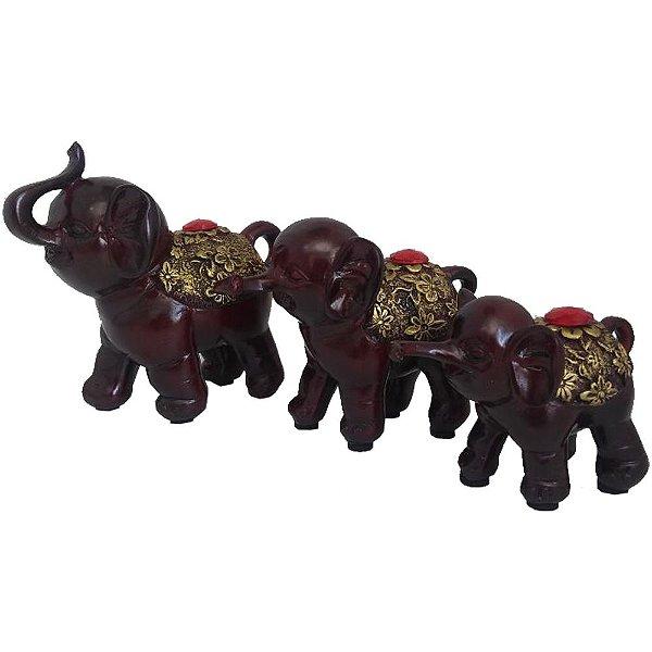 Trio de Elefantes