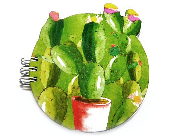 BLOCO - Cactus