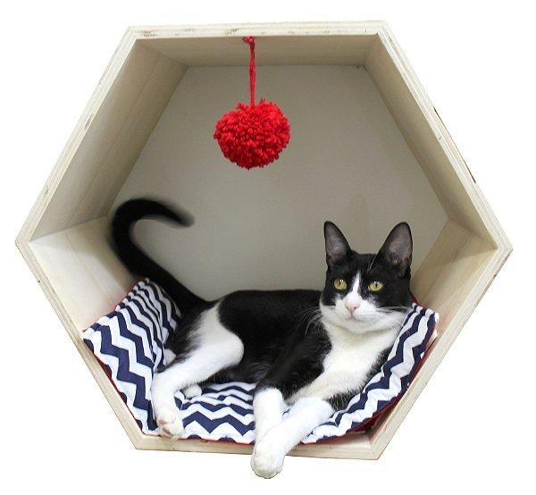 Casinha Hexagonal para Gatos