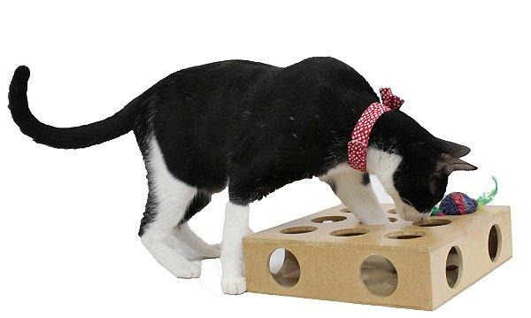 Brinquedo para Gatos Toy Box c/ bolinha