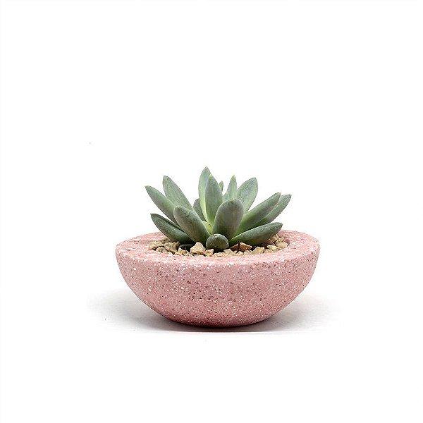 Vaso Mini Bowl