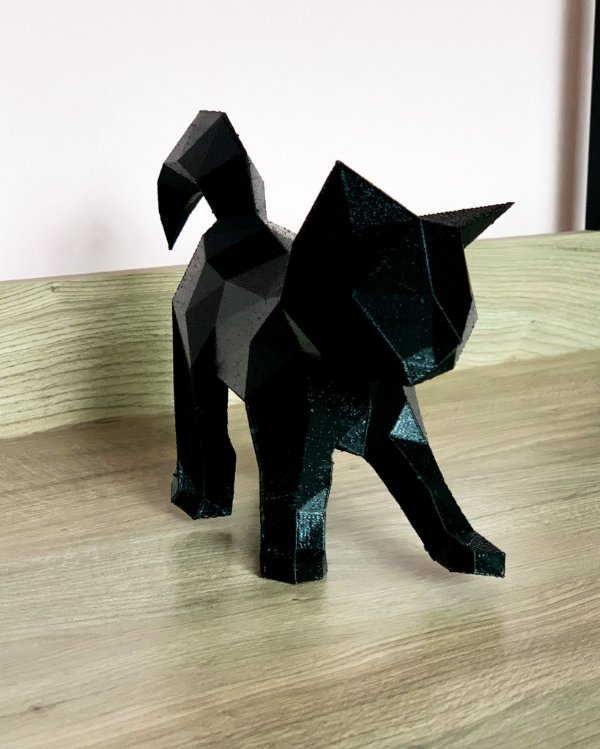 Gatinho Passeando 3D