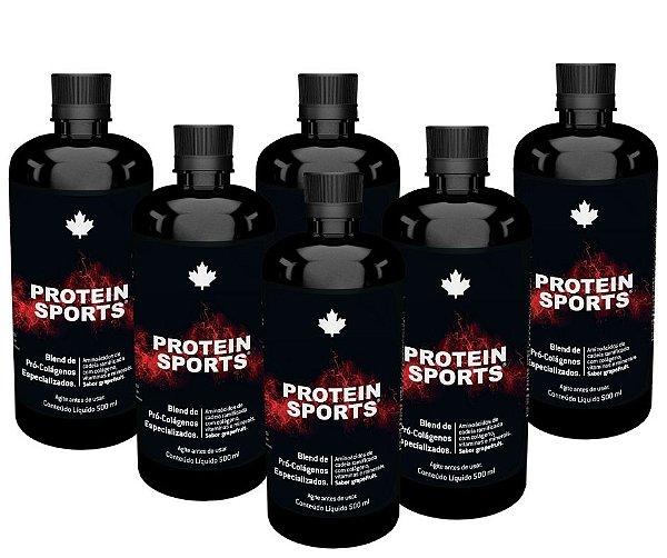 KIT 06 Unidades - Protein Sports - Nutriscience - 500ml