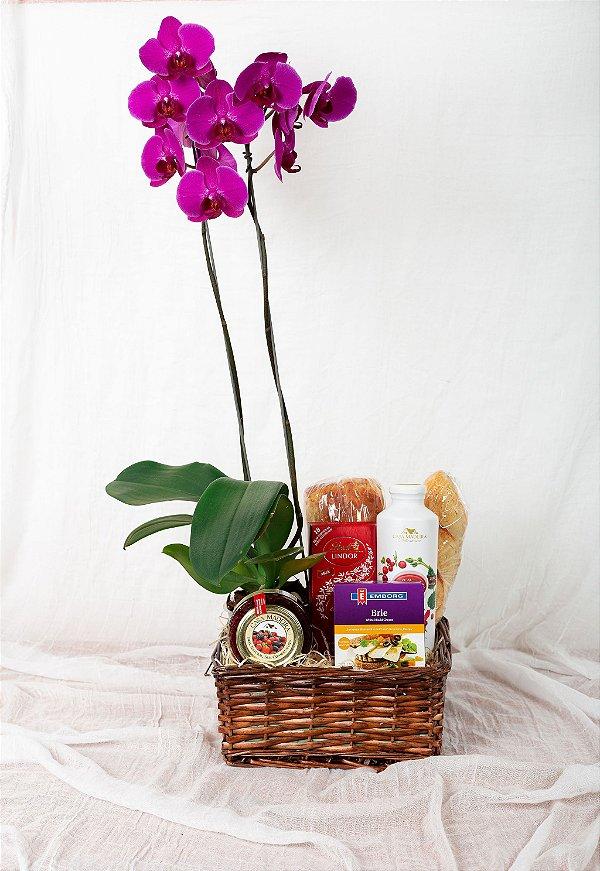 Cesta com Chocolate e Orquídea