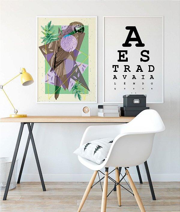Conjunto de Posters Arara + Los Hermanos A Estrada 50x70 cm Cada - Molduras Brancas