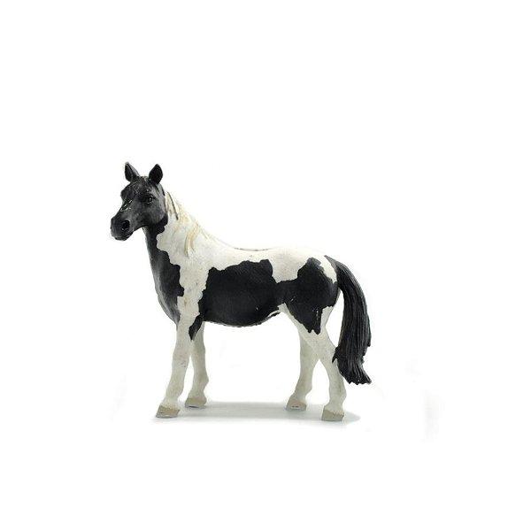 egua qm pampa preta e branca - scheich