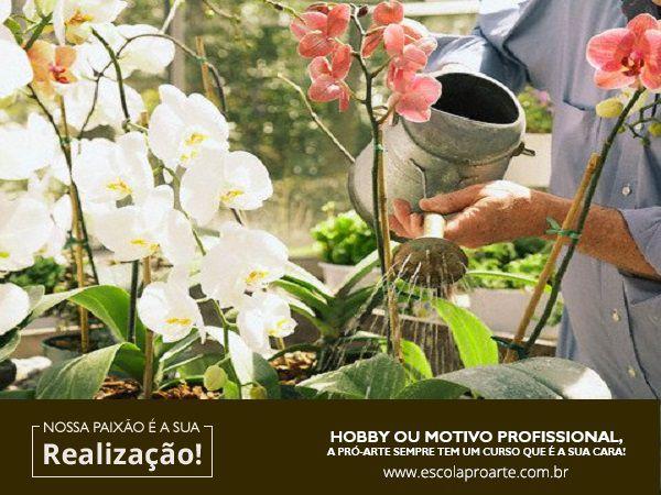 Curso - Cultivo de Orquídeas
