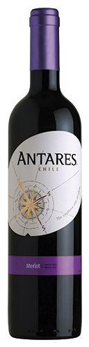 Vinho Antares Merlot