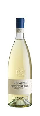 Vinho Bertani Velante Pinot Grigio Branco