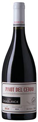 Vinho Pinot Del Cerro