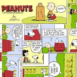 Tecido Tricoline Infantil Snoopy História em Quadrinhos - Preço de 50 cm x 150 cm