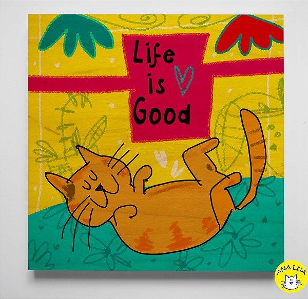 PlaquinhaLife is good - cat