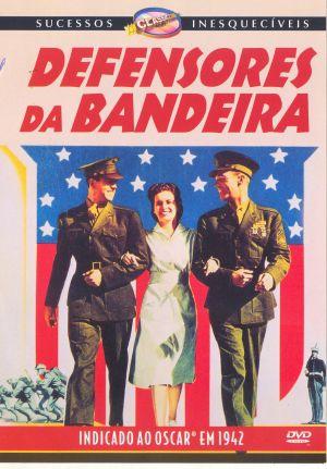 DEFENSORES DA BANDEIRA